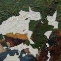 A folytonossági hiányokat a festék eredeti faktúrájához alkalmazkodva pótoltuk